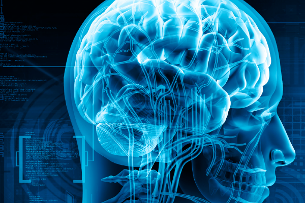 Neurology in Clinical Practice Online CME Course
