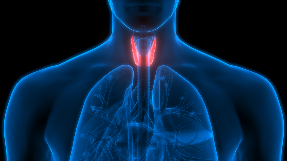 Mayo Clinic Thyroid and Parathyroid Disorders Course 2020 - LIVESTREAM